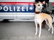 Die Kriminalpolizei fahndete mit Hochdruck nach dem mutmasslichen Täter im Familiendrama von Genf - am Freitagabend konnte sie ihn festnehmen. (Bild: KEYSTONE/APA/APA/GEORG HOCHMUTH)