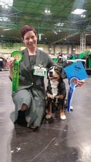 """Angela Jones mit ihrem Entlebucher Sennenhund Bryn, der an den Crufts den """"Reserve Best Dog"""" gewann."""