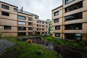 Viel Grün und viel Platz für Begegnungen: Die neue Wohnüberbauung auf der Vögelinsegg bei Speicher ist laut Heimatschutz ein Vorbild für Verdichtung mit Qualität. (Bild: Claudio Weder)
