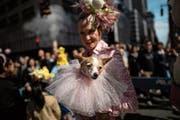 Menschen leisten sich immer mehr Aufwand für ihre Tiere: Halterin mit Hund an der New Yorker Oster-Parade. Bild: Johannes Eisele/AFP (21. April 2019)
