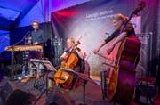 Einer der Konzerte an den diesjährigen Stanser Musiktagen mit der Formation Stalldrang. (Bild: André A. Niederberger, 2.05.2019)