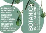 Das Titelbild des «Botanica»-Flyers für dieses Jahr. (Illustration: PD)