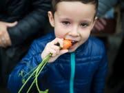 Gemüse steht bei Kindern oft nicht besonders hoch im Kurs. Forschende haben untersucht, wie man Kinder auch bei eher ungeliebten Nahrungsmitteln zum Zugreifen bewegt. (Bild: KEYSTONE/GIAN EHRENZELLER)