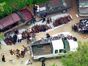 Die Polizei in Los Angeles hat am Mittwoch (Ortszeit) ein Mega-Waffenlager ausgehoben. (Bild: KEYSTONE/AP KCBS/KCAL-TV/KCBC/KCAL)