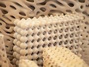 So ähnlich könnten die Strukturen dereinst aussehen, an denen ETH-Forschende zum Wiederaufbau von Korallenriffen arbeiten. (Bild: ETH Zürich/Peter Rüegg)