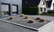 Pflanzen ragen aus einem Vorgarten mit grauen und schwarzen Kieselsteinen. Bremen sagt jetzt den Schottergärten den Kampf an und will grosse Steinflächen verbieten. (Bild: Keystone)