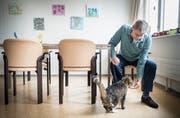 Katze Luana hat mit Herr Künis das goldene Los gezogen, jeden Morgen gibt er ihr ein paar Leckerlis im Alterszentrum in Kreuzlingen. (Bild: Andrea Stalder)