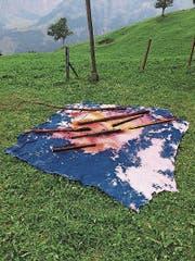 Anita Zumbühl färbt ihre Textilwerke draussen. (Bild: PD)