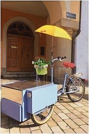 Ein Hingucker sondergleichen: Das sommerliche Biblio Bike soll auffallen. (Bild: PD)