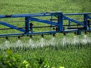 Bayer hält an der Produktion von Glyphosat fest, will aber zugleich Milliarden in die Entwicklung von Alternativen investieren. (Bild: KEYSTONE/EPA/SASCHA STEINBACH)