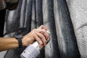 Legal sprayen auf der Kreuzbleiche. (Bild: PD)
