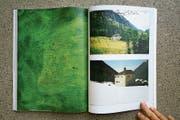 Emaillierte Kupferplatten treten in den Dialog mit den Fotografien aus dem Bergell in «Katalin Déer: Verde». (Bild: Katalin Déer)