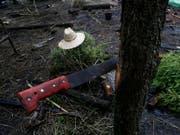 Machete, wie sie bei Farmarbeiten in Mexiko verwendet wird. (Bild: KEYSTONE/AP/MARCO UGARTE)
