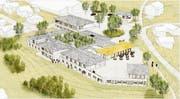 Die Projektstudie sieht vor, auf den Grundmauern des Resorthotels in Mogelsberg mehrere kleine Gebäude mit Hotelzimmern, Seminar- und Therapieräumen und einem Restaurant zu bauen. Visualisierung: Nägeli AG