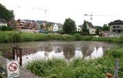 Der Heerweiher, ein Relikt der Textilindustrie, liegt mitten im Siedlungsgebiet von Oberuzwil. (Bild: Philipp Stutz)