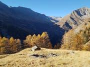 Eine weitgehend intakte Natur, wertvolle Landschaften und ein kulturelles Erbe kennzeichnen den geplanten Parco Val Calanca in Südbünden. (Bild: Staka GR)