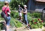 Kompost- und Gartenberaterin Helena Städler (rechts) erklärt den Besuchern das Mulchen mit getrocknetem Rasenschnitt. (Bild: Yvonne Aldrovandi)