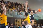 Davin Ammann (am Ball) im NLA-Spiel gegen GC Amicitia Zürich. (Bild: Michel Canonica)