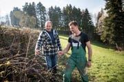 Landwirt Josef Stöckli und sein Sohn Michi Stöckli haben die Haselsträucher dieser Hecke stark zurückgeschnitten, damit andere Jungpflanzen darin wachsen können. (Bild: Manuela Jans-Koch, Herlisberg, 6. April 2019)