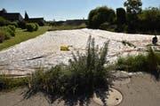 Die belastete Parzelle ist mit einer Plastikfolie abgedeckt, damit die Schadstoffe im Boden nicht über den Regen ins Grundwasser gelangen. (Bild: Markus Schoch)