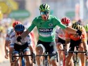 12. Etappensieg an der Tour de France: Peter Sagan lässt bei der Sprintankunft in Colmar die Muskeln spielen (Bild: KEYSTONE/AP/CHRISTOPHE ENA)