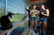 Angela Roth (links) und Anna Auf der Maur vom TSV Zug kümmern sich liebevoll um ihre Gäste. (Bild: Stefan Kaiser, Allenwinden, 10. Juli 2019)