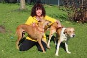 Die Wittenbacher Hundetrainerin Manuela Albrecht mit ihren Podenco-Mischlingen Jacky und Limon. Jacky wurde in Spanien im Müll gefunden. (Bild: PD)