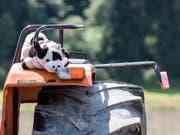 In Deutschland starben zwei Kinder, nachdem sie von einem Traktor gefallen waren. (Bild: KEYSTONE/ALEXANDRA WEY)