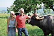 Edith und Josef Villiger lassen ihre mächtigen, aber friedlichen und genügsamen Wasserbüffel auch in Naturschutzwiesen weiden. Damit erübrigt sich dort das Mähen von Hand. (Bild: PD)