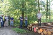 Forstpraktikant Philipp Eigenmann versucht, sich einen Überblick zu verschaffen. (Bild: Christine Luley)