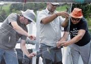 Das Amt für Wald und Wild untersuchte im August 2018 die Fischfauna im Ägerisee. Hier entfernen gerade Fachleute Fische vom Netz und vermessen sie. (Bild: Werner Schelbert, 28. August 2018)