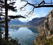 Ein Blick von der Via Urschweiz auf die Reussebene. Bild: PD