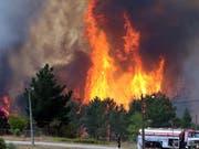 Die jüngsten Waldbrände in Portugal haben 70 Quadratkilometer Gehölz zerstört. Die Flammen waren am Montag zu 90 Prozent unter Kontrolle. (Bild: KEYSTONE/EPA LUSA/ANTIONIO JOSE)