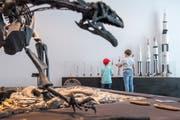 Zwei Kinder betrachten die Raketenmodelle der Ausstellung «50 Jahre bemannte Mondlandung». (Bild: Urs Bucher)