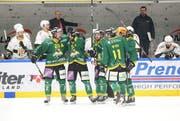Im Playoff-Viertelfinal besiegte der HC Thurgau den HC Ajoie in sieben Spielen und erreichte erstmals seit 21 Jahren wieder die Playoff-Halbfinals in der zweithöchsten Schweizer Eishockeyliga. (Bild: Mario Gaccioli, Weinfelden, 6. März 2019)