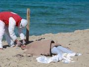 Ein libyscher Retter kümmert sich um eine der bisher 67 aus dem Mittelmeer geborgenen Leichen des Bootsunglücks vor der Hafenstadt Al-Chums. (Bild: KEYSTONE/AP/HAZEM AHMED)