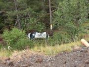 Acht Meter tief stürzte das Auto eines 18-Jährigen am Samstagmorgen in Brienz GR nach einem Selbstunfall in die Tiefe. (Bild: Kantonspolizei Graubünden)