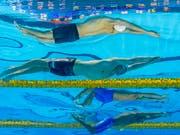 Die Schwimm-WM in Südkorea wird von einem Unglück am Rande des Geschehens mit mindestens zwei Todesopfern überschattet. (Bild: KEYSTONE/EPA/PATRICK B. KRAEMER)