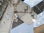 «Dragon»-Raumfrachter an der Internationalen Raumstation ISS. Derzeit herrscht auf der ISS Hochbetrieb: fünf Raumschiffe sind derzeit angedockt. (Bild: KEYSTONE/AP NASA)