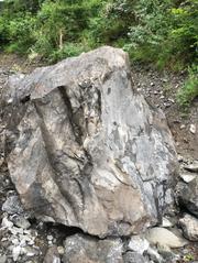 Ein heruntergestürzter Felsbrocken unterhalb der Axenstrasse. (Bild: Astra)