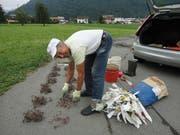 Walter Waser bereitet die Mäusejagd vor. (Bild: Ruedi Wechsler, Stans, 11. Juli 2019)