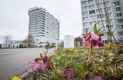 Landmarke in Huben: das Kantonsspital. (Bild: Andrea Stalder)