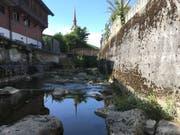 Im Dorfbach in Oberägeri wurden tote Fische gefunden. (Quelle: Zuger Polizei)