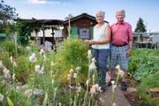 «Wir wollten unseren Garten so naturnah wie möglich gestalten»: Elsbeth und Toni Schäfler in ihrer blühenden Oase. (Bild: Urs Bucher (2. Juli 2019))