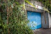 Gewissermassen im Grünen: die Zivilschutzanlage Neuhauserstrasse. (Bild: Andrea Stalder)