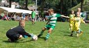 Die F-Junioren zeigen beim Aschoren-Cup jeweils vollen Einsatz. (Bild: Harry Vigano, Flüelen, 15. August 2018)