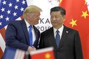 Trump und Xi Jinping: Können sie die Hongkong-Krise lösen? (Bild: Keystone)