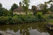 Der Park der Luxburg reicht bis ans Wasser. (Bild: Reto Martin)
