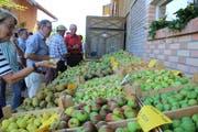 Breite Auswahl: Die Festbesucher konnten Früchte probieren, die in der Obstsortensammlun wachsen. (Bild: Trudi Krieg)