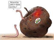 Die Karikatur von Silvan Wegmann zum umstrittenen SVP-Wahlplakat.